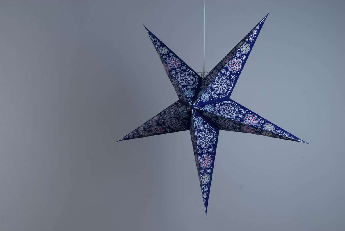 Deluxe Lanterns Firework Midnight Violet Paper Star Party Decorations
