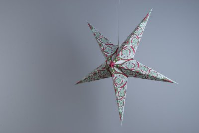 Deluxe Lanterns Japanese Lily Paper Star Party Decorations