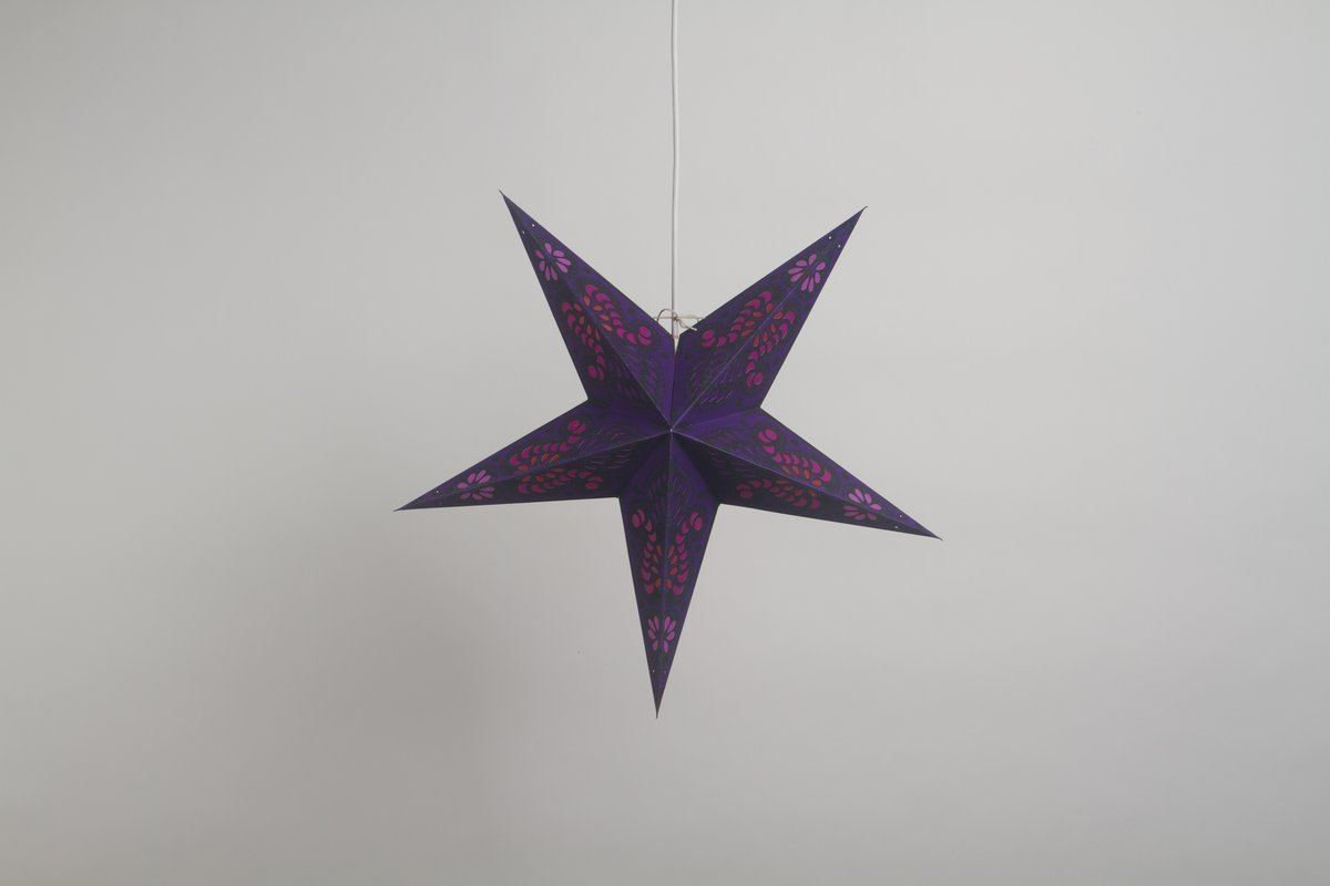 Peacock  Violet Paper Star Party Decorations