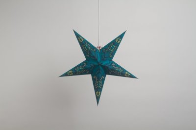 Peacock  Turquoise Paper Star Party Decorations