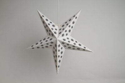 Aster White Paper Star Party Decorations