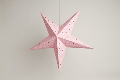 Aster Pink Paper Star Party Decorations