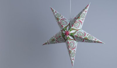 Japanese Lily Moss Green and Fuschia Pink Paper Star Party Decorations